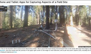 Screenshot of a webpage including a Google Street View spherical panorama of a highly instrumented tree at the Southern Sierra Critical Zone Observatory.