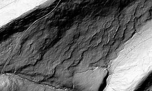 Grayscale image of LiDAR data for a small study area in Pennsylvania about 2 miles long by 1 mile wide.  Roads, fields, and wavy ridges are visible.