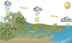 A schematic cross section of California's landscape and hydrologic cycle.  The landscape includes mountains, forests, rivers, and ocean.  The cycle depicts clouds, rain, snow, evaporation, runoff, and aquifer recharge.